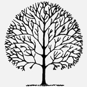 koka vainaga sakopšana, vainaga sakopšana,